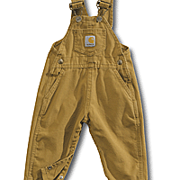 Carhartt Infant Bib Overalls